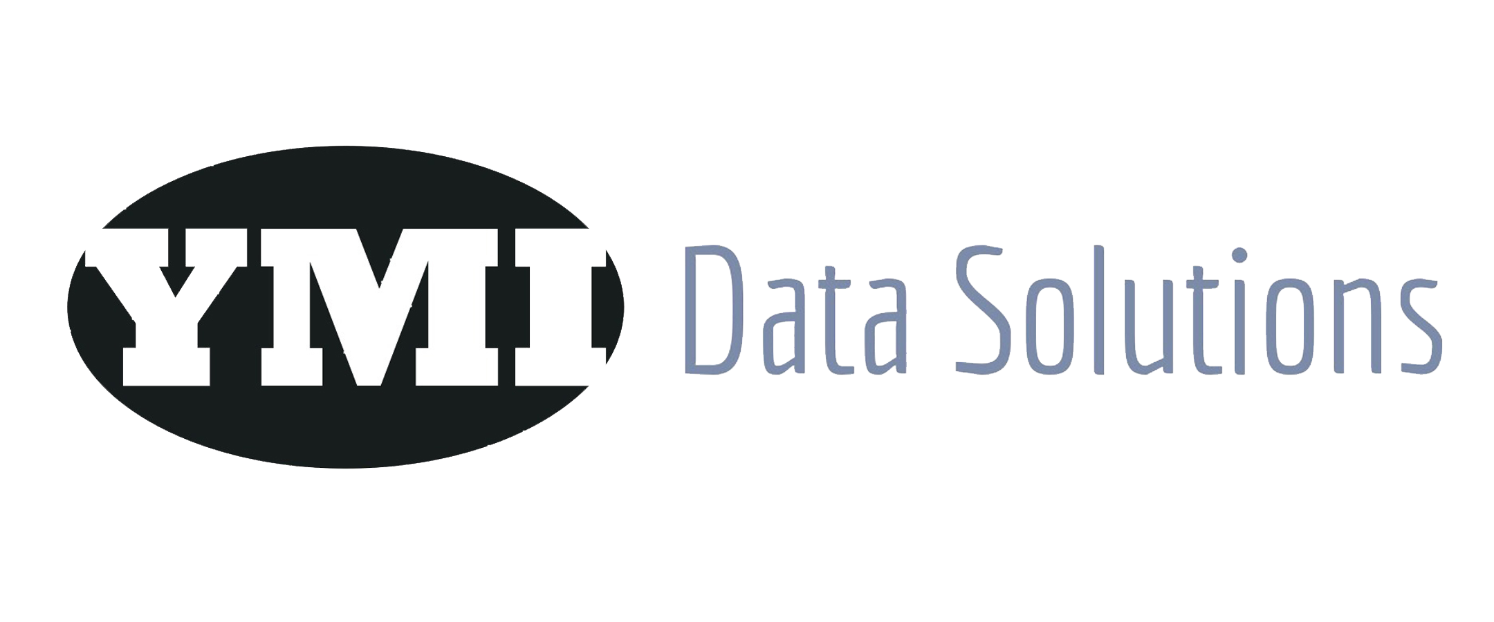 YMI Data Solutions Inc
